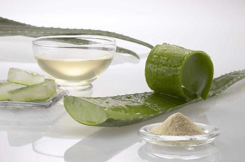 aloe-vera-leaf-pulp
