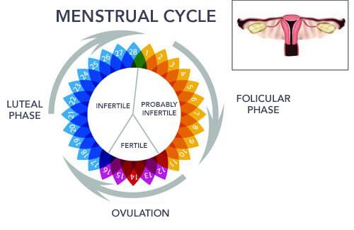 What Causes Irregular Periods?
