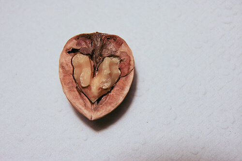 Half a walnut in its shell
