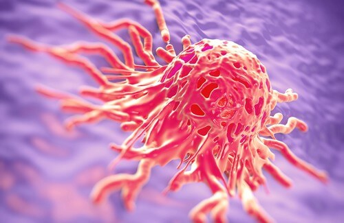 Combat Cancer With Medicinal Herbs