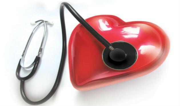 Heart-cardiac