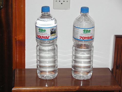 bottlekidneys-2