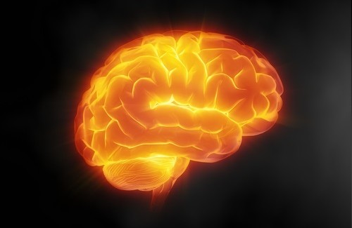 7 Tips for Better Brain Health