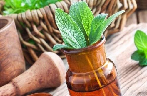 15 Natural Medicinal Herbs