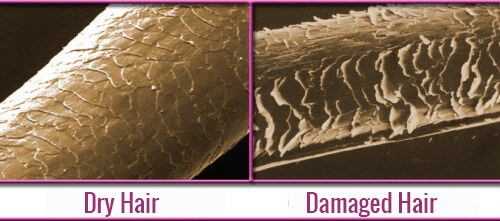 Hairstyles Influence Hair Health