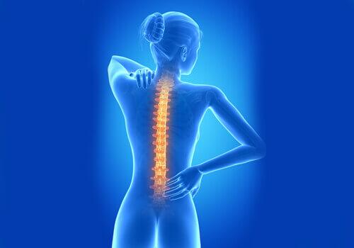 back-pain-2-3