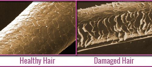 healthy hair and damaged hair