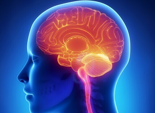 11 Habits That Negatively Affect Your Brain
