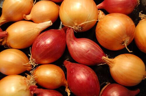 mixed-onions