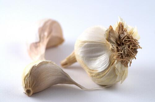 4-garlic-8