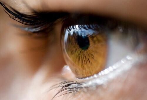 Can Eye Colour Predict Your Health?