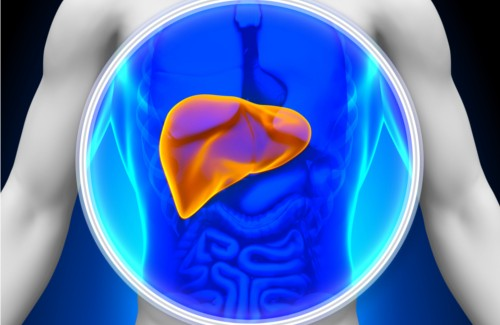 8 Foods to Naturally Cleanse Your Liver