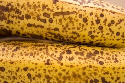 banana-21-3