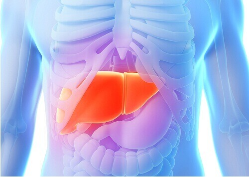 Cleanse Your Liver With These 11 Foods