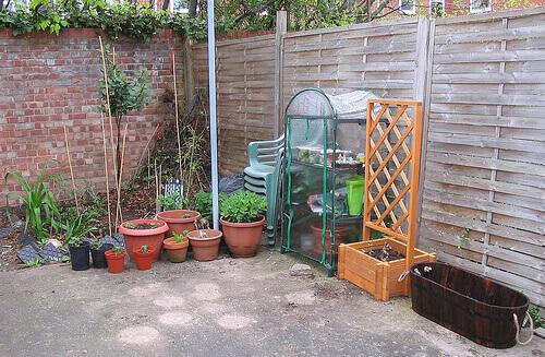 vegetable-garden4