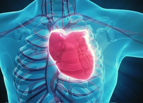 Heart-8