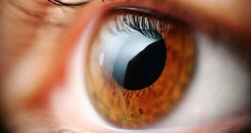 Ease Eyestrain With Simple Exercises