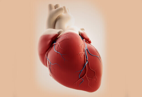 heart-2-7