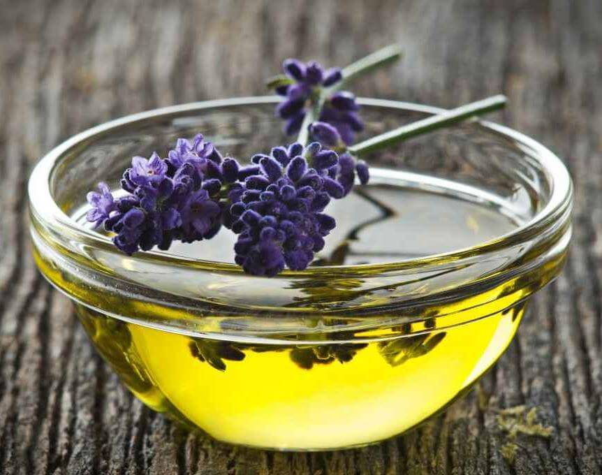 lavender-0