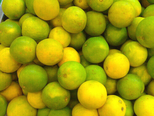 lime-0